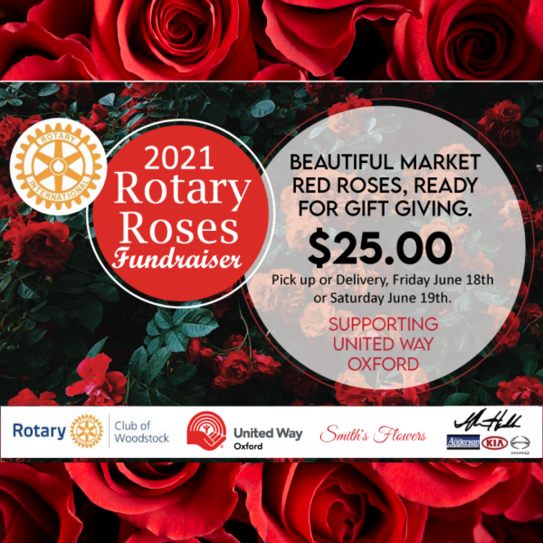 Rotary Roses
